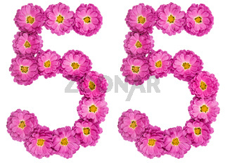 Arabic numeral 55, fifty five, from flowers of chrysanthemum, isolated on white background