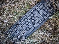 Tastatur liegt im Gras Umweltverschmutzung