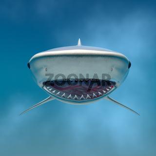 tiger shark swimming underwater