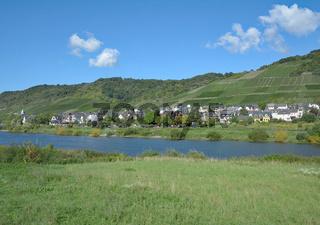 Weinort Mueden an der Mosel,Rheinland-Pfalz,Deutschland
