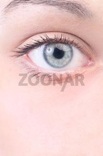 closeup view of a beautiful female eye