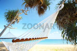 relaxing net