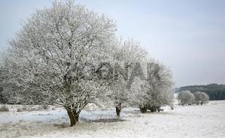 Winterlandschaft in Oberfranken