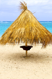 Tropical beach umbrella
