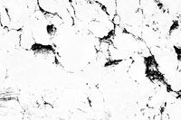 Invert marble texture white and black background,The marble texture white and black line,Marble texture background for design or decorate project.