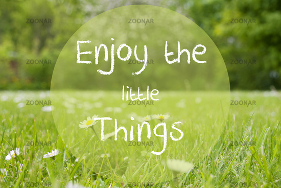 Gras Meadow, Daisy Flowers, Quote Enjoy The Little Things
