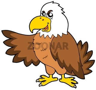 Cartoon eagle on white background - isolated illustration.