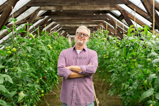 happy senior man at farm greenhouse