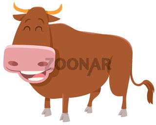 bull farm animal