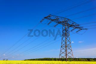 Strommast in einem blühenden Rapsfeld in Brandenburg