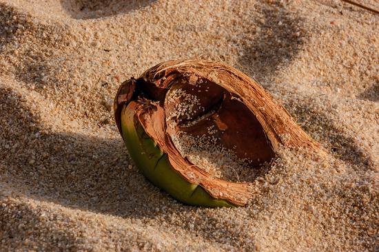 Treibgut am Strand von Mae Nam, Ko Samui