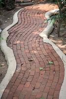 Pathway in a garden