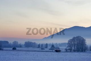 Frostiger Morgen mit Nebel, Bayerische Voralpen, Oberbayern, Bayern, Deutschland, morning mood with hoarfrost in bavarian pre-alps