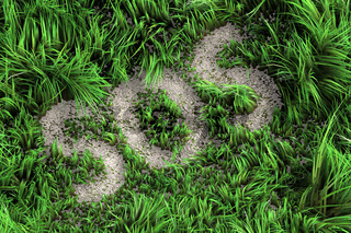 SOS sign in the grass