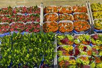 Kisten mit versandfertigen Blumen in einer Lagerhalle, Royal FloraHolland, Aalsmeer, Niederlande