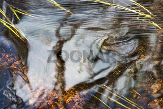 Reflektionen in einem Bach, Lappland