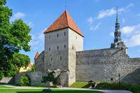 Fortress of old Tallinn.