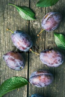 Fresh plums from garden.