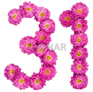 Arabic numeral 31, thirty one, from flowers of chrysanthemum, isolated on white background