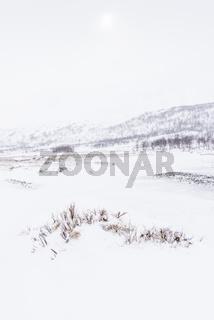 Landschaft im Schneetreiben, Vistasdalen, Lappland