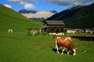 Kreuzkofel-Gruppe in den Dolomiten, Suedtirol, Italien