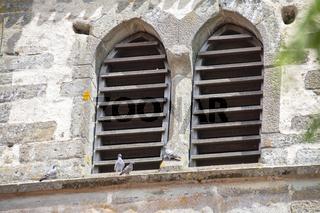 St. Peter und Paul, Insel Reichenau, Bodensee, Juli