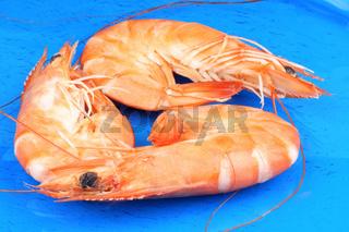 Boiled shrimps.