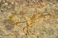 Ancient rock drawings, Australia