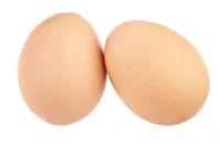 Eier - freigestellt