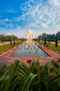 Distant Taj Mahal Reflection Fountain Flowers