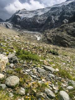 Gletscherpanorama, Hohe Wut bei Obergurgl, Ötztal, Österreich