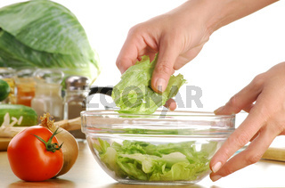 Composition with vegetable salad bowl and salad ingredients