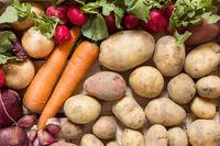 Gemüse und Wurzelgemüse in einer Holzkiste