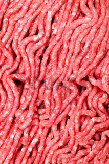 Raw ground meat