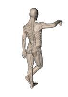 Mann_lehnend_Skelett_hinten_seitlich_weiss