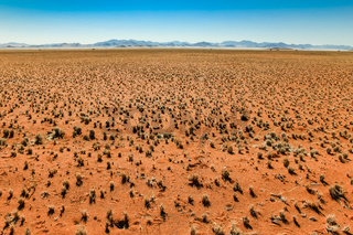 Great view over grassy desert plain and mountain range