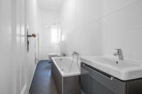 modern bathroom after renovation , white bathroom
