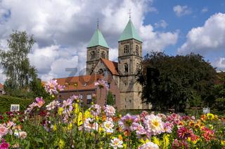Legden - Dahliengarten