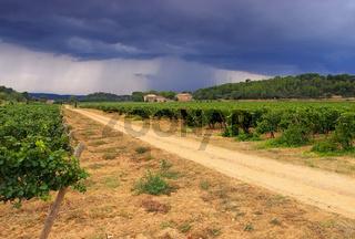 Weingut in den Corbieres, Landschaft im Süden Frankreichs - vineyard estate in Corbieres, landscape in southern France