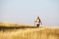 Man on sunny meadow