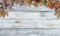 Autumn acorns and leaves on rustic white wood in top arch border