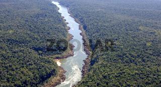 Regenwaldgebiet im Bundesstaat Parana