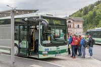 Ausflugsbus in Bad Schandau