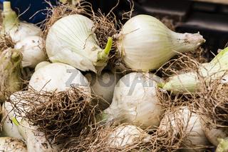 Zwiebeln auf dem Markt, onions on a market
