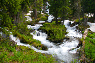 Snow Melt Cascades