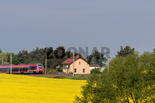 Regionalexpress RE50 bei Wurzen (Sachsen)