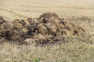 field with manure heap