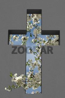 Cross Cutout