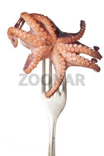 Oktopus auf einer Gabel
