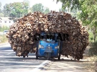 Kokosnuss-Laster_Indien.JPG